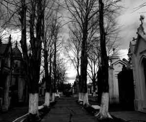 La Leyenda de la Flor del cementerio