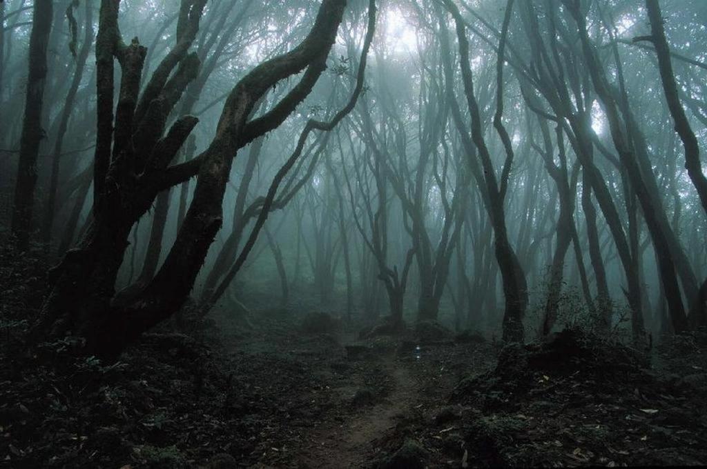 Cuentos de Terror La montaña de los curiosos