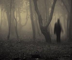 Cuentos de Terror: El fotógrafo fantasma