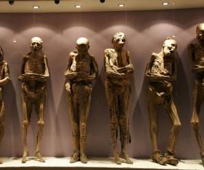 Cuentos de terror: Las momias del Dr. Knoche